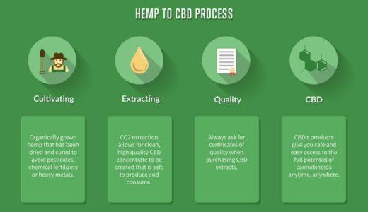 CBD の抽出方法について