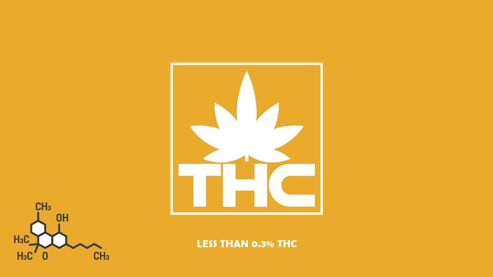 0.3% 未満なら合法?THC が含まれた CBD 製品について